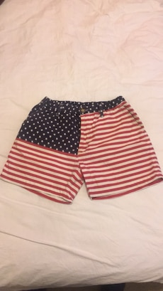 Chubbies Shorts The 'Mericas