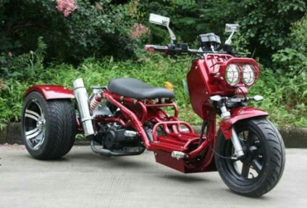 49cc Custom Mad Dog Trike Scooter
