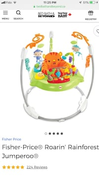 baby's green and white jumperoo Richmond Hill, L4S 0X8