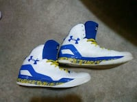 blue-and-white Air Jordan 1 shoes High Point, 27263