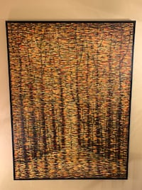 brown and black area rug Highlands Ranch, 80129