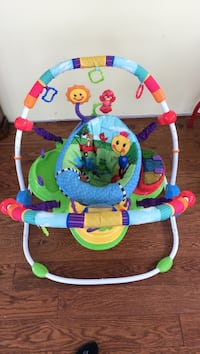 baby's multicolored jumperoo Front Royal, 22630