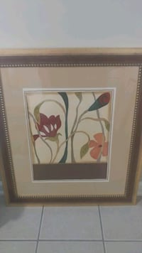 Set of 2 picture frames Woodbridge, 22193