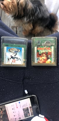 2 gameboy color games Richmond, 23227