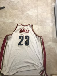 LeBron James Cleveland Cavaliers jersey Windsor Mill, 21244