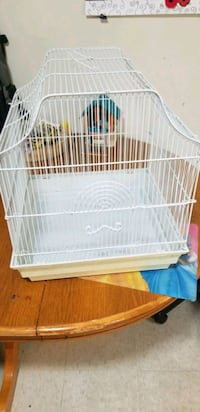 Bird cage $10 ???? Kitchener, N2B 2N9