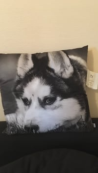 siberian husky tryck throw pillow 克里斯蒂安斯塔德, 291 39