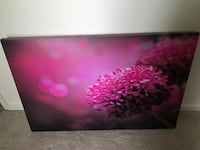 black and pink abstract painting Glen Allen, 23060