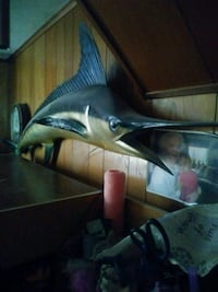 Mounted Blue Marlin 88 in Linthicum Heights, 21090