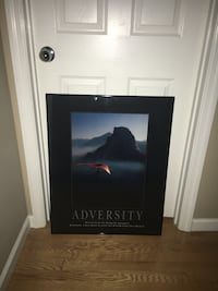 Adversity poster Weldon Spring, 63304