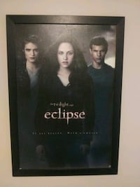 Twilight eclipse picture