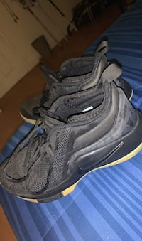 Basketball Shoes/Sneakers