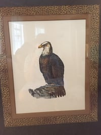 Eagle print Fort Myers, 33931