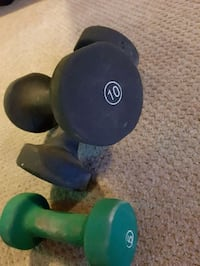 blue and green dumbbells and barbell Calgary, T2W 3J5