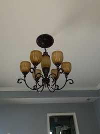 chandelier light with the bulb lights