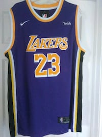 Lakers purple and yellow LeBron jersey Oxnard, 93033