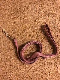 Dog leash 5 feet long Tampa, 33606