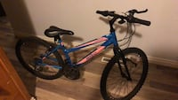 Seven speed mountain bike 40$ need front brakes adjusted back brake good tires good only used a few time still new Edmonton, T5E 3M6