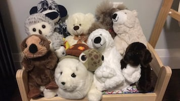 Clean stuffed animals looking for a new home