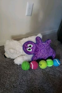 Assorted dog toys- All never or gently used
