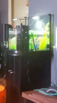 10Gallon fish tank with stand