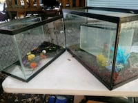 rectangular black framed pet tank Ferguson, 63135