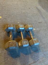 Dumbbells Weights Free Weights