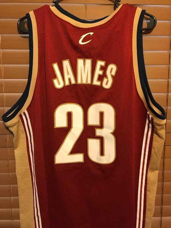 reputable site 465f3 19f9e LeBron James rookie jersey