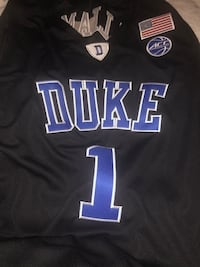 Zion Williamson Jersey Washington, 20020