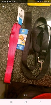 Medium Dog Collar, Harness, and 6ft leash set Charlotte, 28269