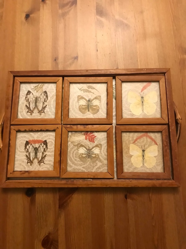 Vintage pressed butterfly tray and coaster set bc43a0d1-41bc-4dad-824e-5144af974484