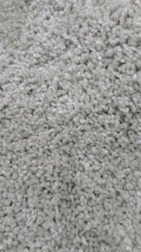 14ft x 14ft Carpet Silver Spring, 20902