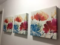Art Canvass (Almost New Condition) Vancouver, V5S 3N5