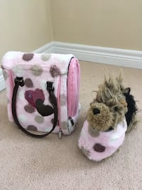 Luci play dog with bag