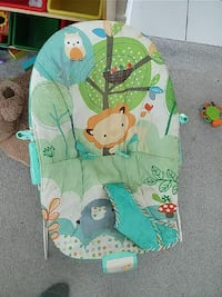 baby's green and white bouncer