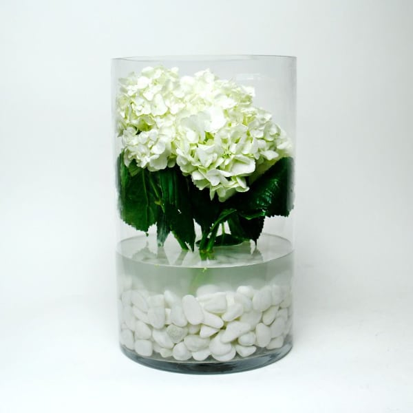 """16"""" x 10"""" Glass Cylinder Vases. (3 pieces)"""