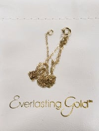 Jewelry chain 14KT Everlasting gold  Brooklyn, 11226