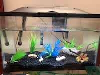 fish tank with light and filter 内珀维尔, 60564