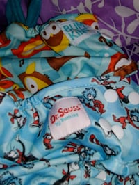 12 Cloth diapers plus liners and wet bag Lexington, 40509