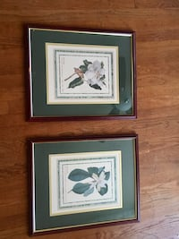 Magnolia decorative pictures and frame