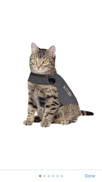 Cat Large thundershirt for anxiety