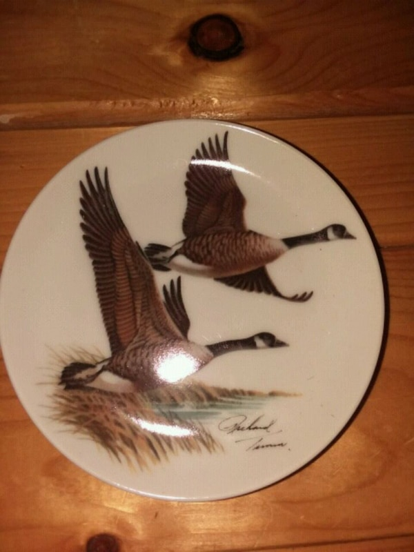 Canada Geese decorative plate