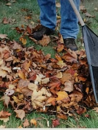 Leaf raking Service