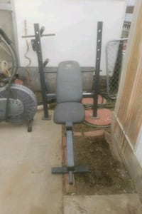 Gold gym weight bench