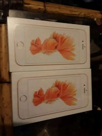 two iPhone 6s $300.00 per phone brand new n Hawthorne, 32640