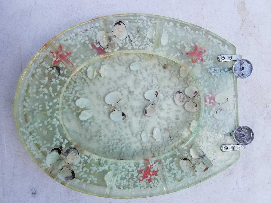 Used Elongated Seashell Toilet Seat In Montgomery