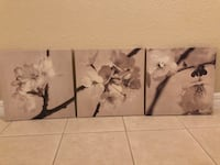 3 piece Flower Canvas - Like New Orlando