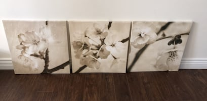White and brown petaled flower painting.