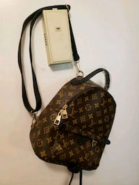 Small LV Backpack Alexandria, 22304