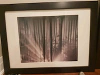 Sunrise in the Forest Print with Wood Frame  Mississauga